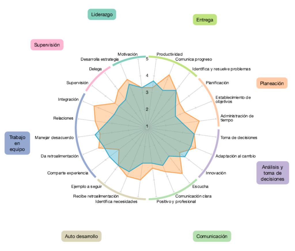 Reporte Evaluaciones 360 - Diagrama